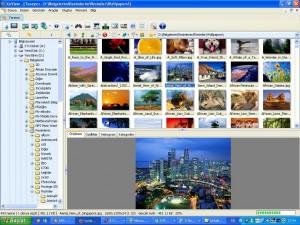XnView Tarayıcı ekranı