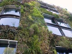 NewScientist yeşil yapı galerisi için tıklayın.