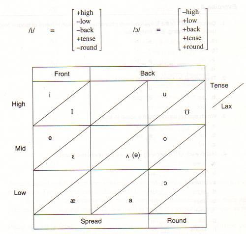 İngilizce'de sesli harflerin fonemleri.
