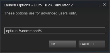 Steam'de optirun komutu.